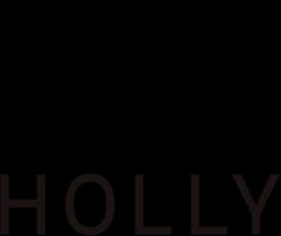 ホーリー情報システム株式会社